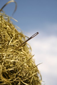 The proverbial needle in the haystack