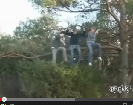 Sawing off the branch on which one is sitting . . .  [HT: YT]